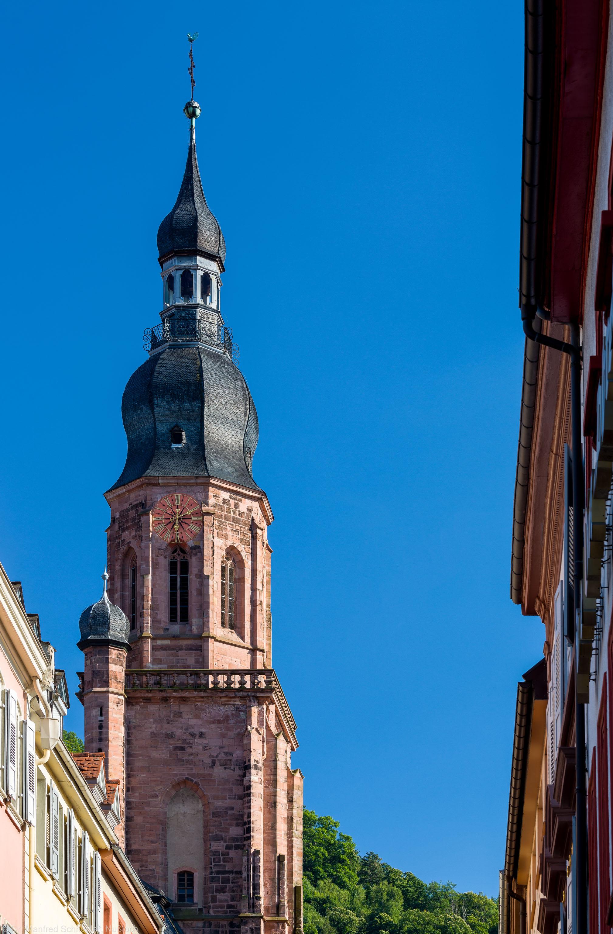 Heidelberg - Heiliggeistkirche - Aussen / Nord - Blick vom Neckar an der Haspelgasse auf den Turm am späteren Nachmittag (aufgenommen im Juli 2013, am frühen Abend)