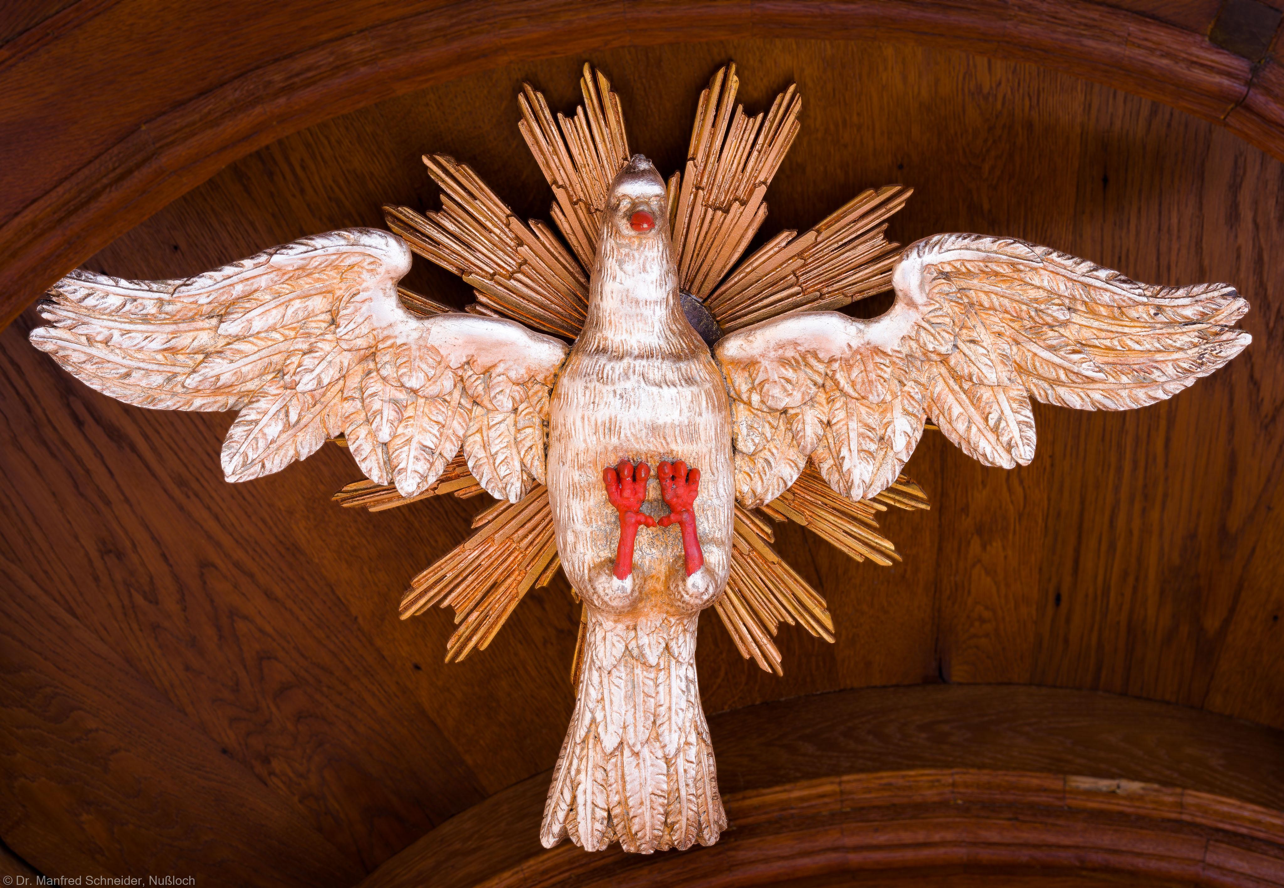 """Heidelberg - Heiliggeistkirche - Kanzel - Symbol """"Heiliger Geist"""" im Deckel der Kanzel (aufgenommen im November 2013, am späten Nachmittag)"""