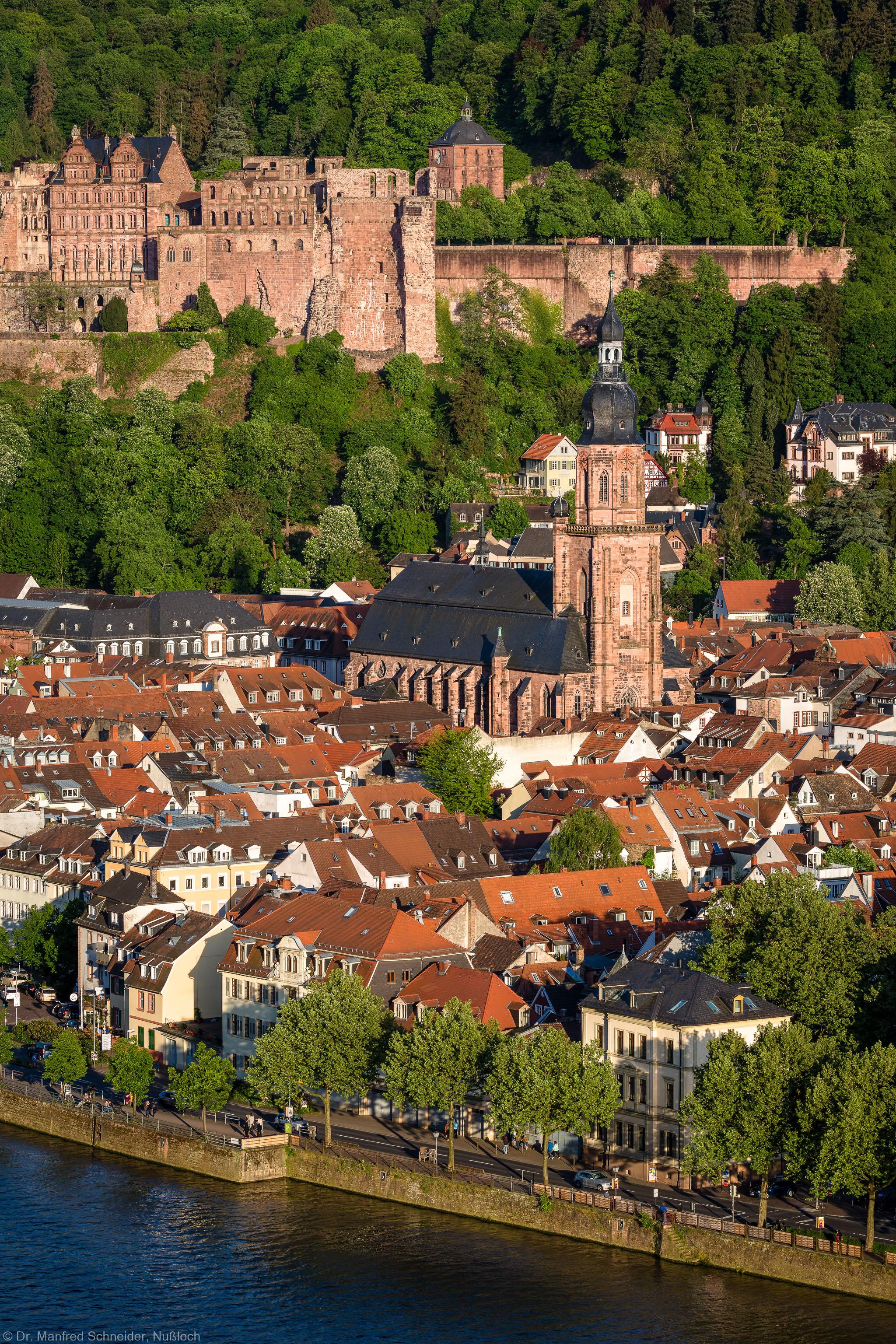 Heidelberg - Heiliggeistkirche - Nordwestseite - Blick vom westlichen Philosophenweg auf das Schloss, die Altstadt und die Heiliggeistkirche (aufgenommen im Mai 2015, am frühen Abend)