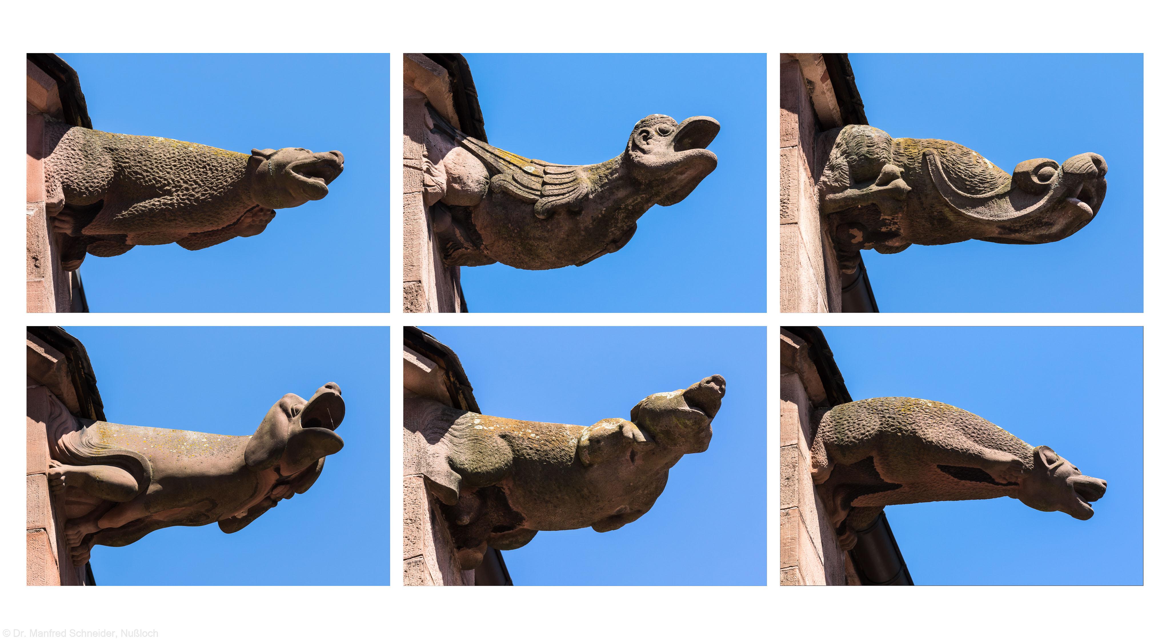 Heidelberg - Heiliggeistkirche - Dach - Südseite - v.l.n.r., v.o.n.u.: 5. und 1. bis 5. Wasserspeier, von Westen aus gezählt, von Westen aus gesehen, bis auf Wasserspeier oben links, dieser von OSTEN aus gesehen und horizontal GESPIEGELT (aufgenommen im Juni 2015, am Nachmittag)